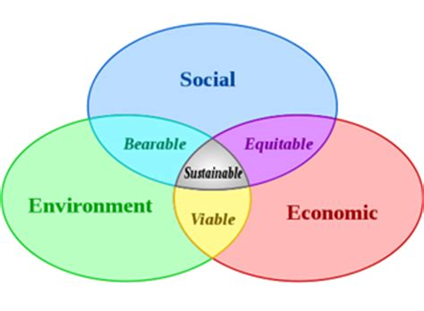 Personal and social identity essay